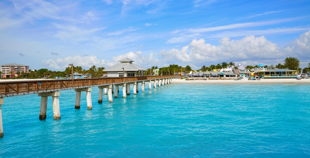 You can fly from Toronto to Florida roundtrip for less than $300 this winter