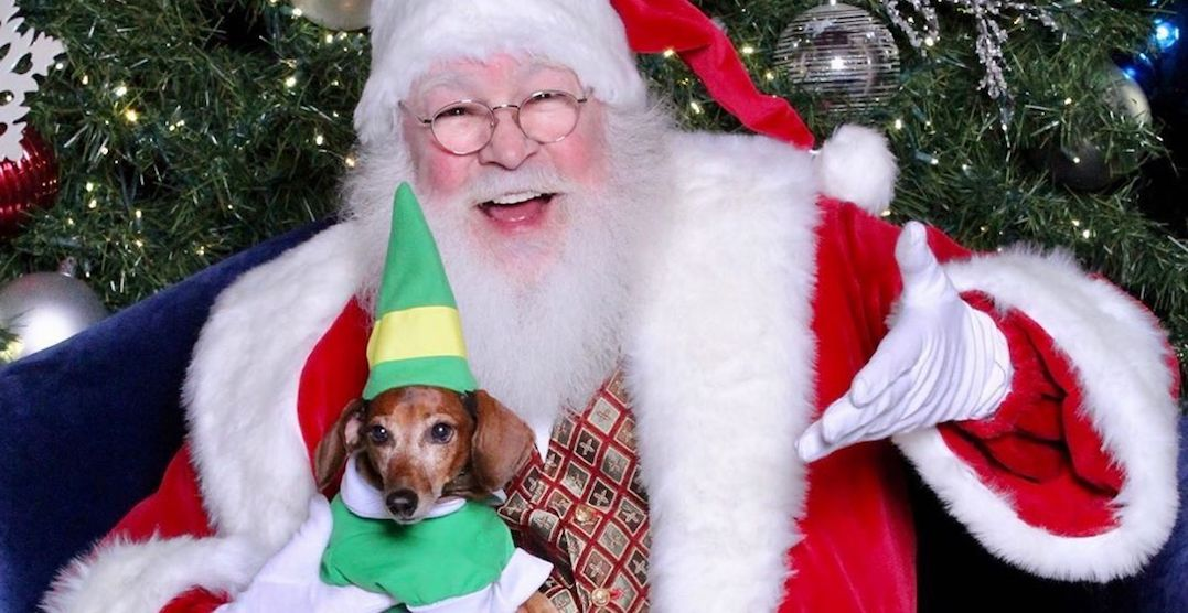 You can get pawsitively adorable Santa photos for your pet for free starting this weekend