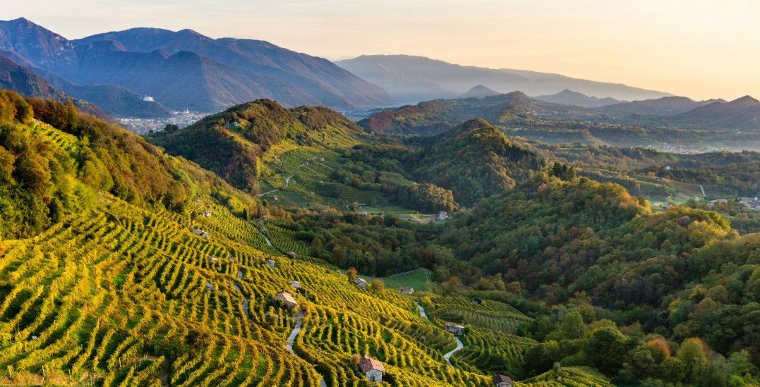 This Italian paradise is home to the best sparkling wine you'll ever taste (PHOTOS)