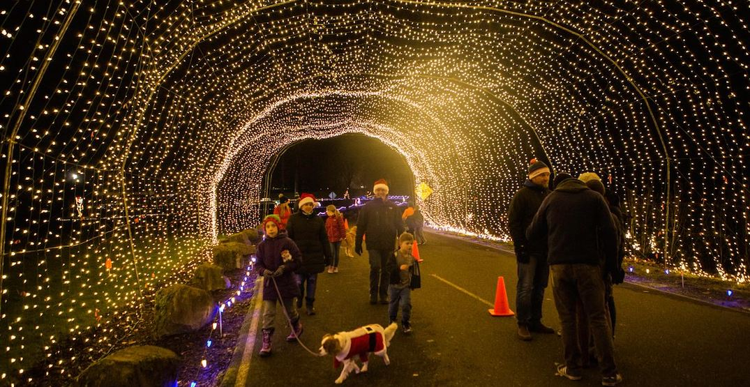 There's an adorable dog-friendly light festival in Portland next week