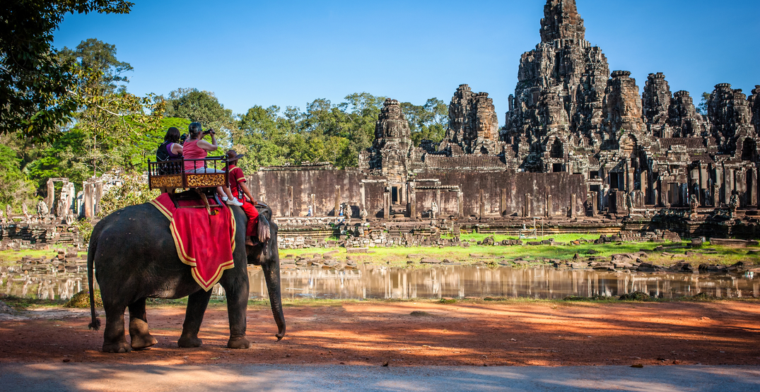Elephant riding officially banned at Cambodia's Angkor Wat