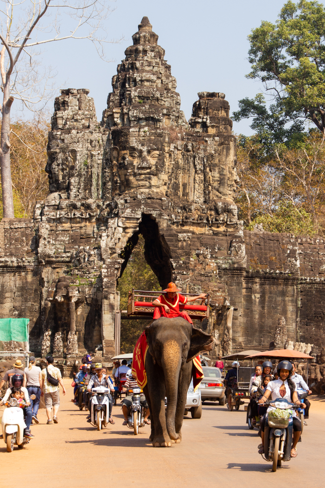 elephant-temple-traffic