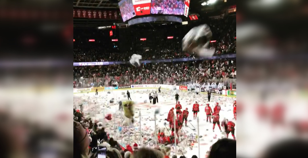 Fans flood ice with teddy bears at Calgary Hitmen game (VIDEOS)
