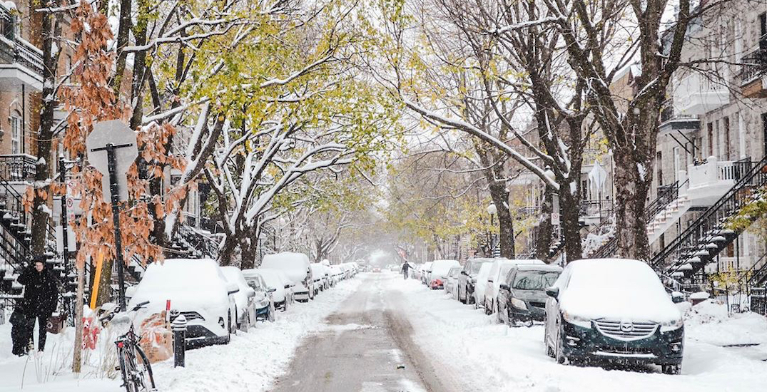 Today's snow has turned Montreal into a winter wonderland (PHOTOS)