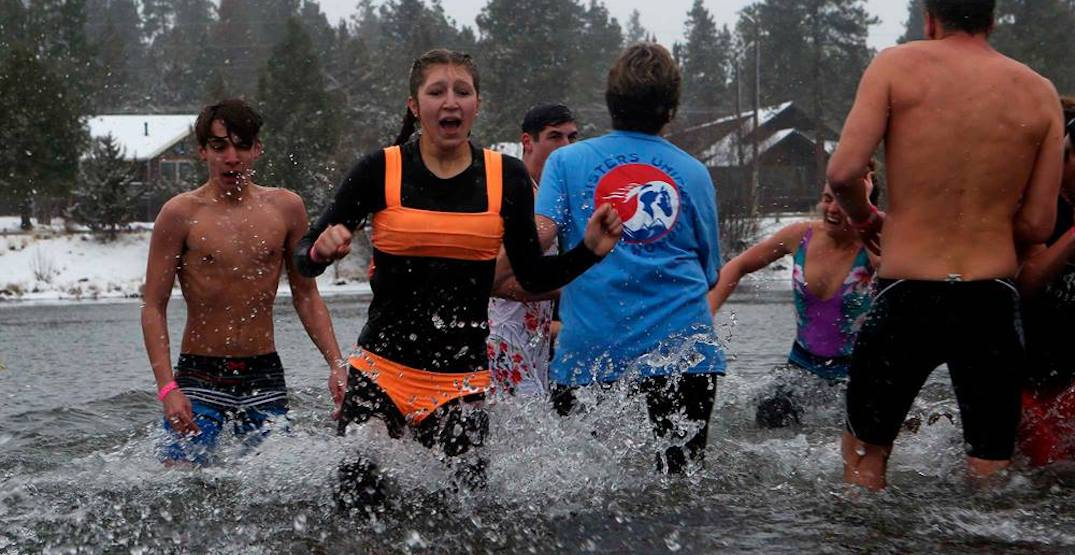 Dive into ice cold water at Oregon's annual Polar Plunge this winter