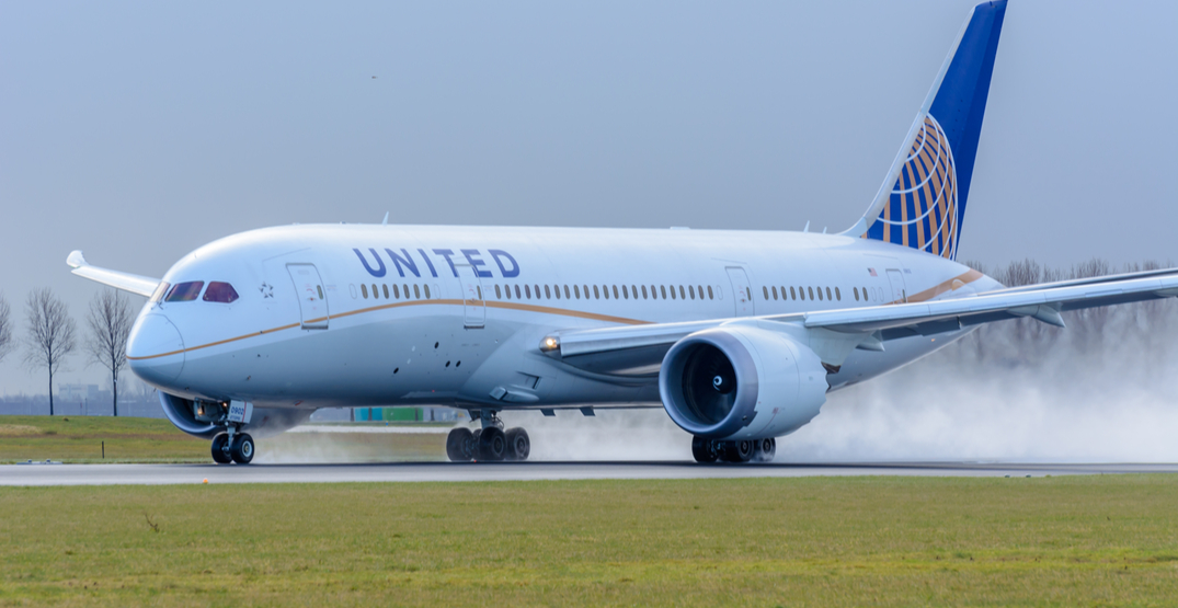 A woman was stung by a scorpion on a United Airlines flight