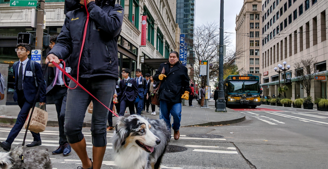 Seattle hopes to make streets safer by changing how its crosswalks operate