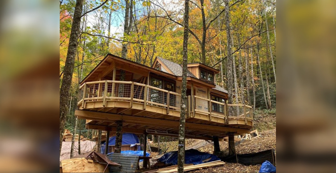 A beautiful treehouse resort is coming to Tennessee in 2020