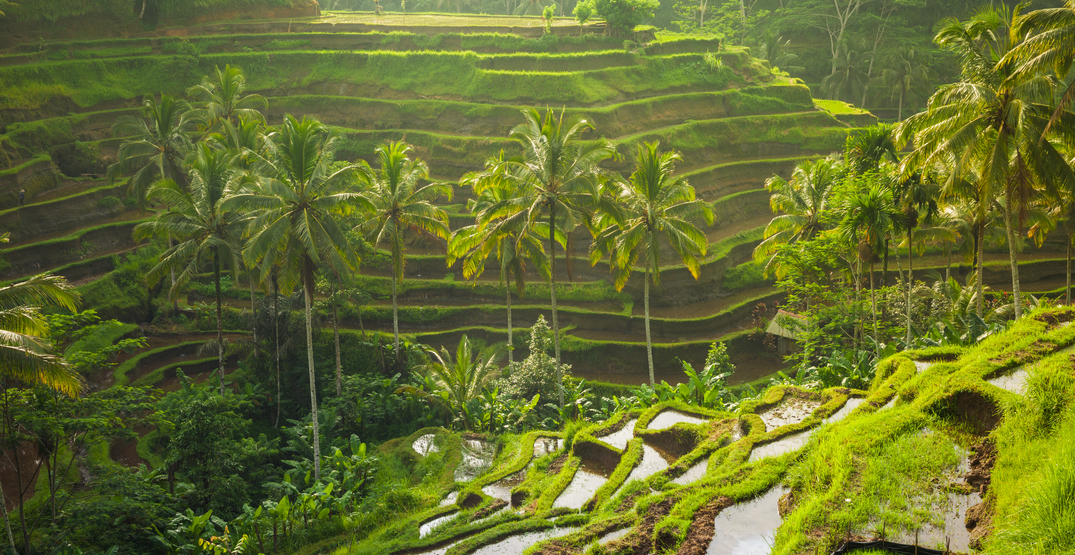Top 5 stunning Bali destinations you have to see to believe