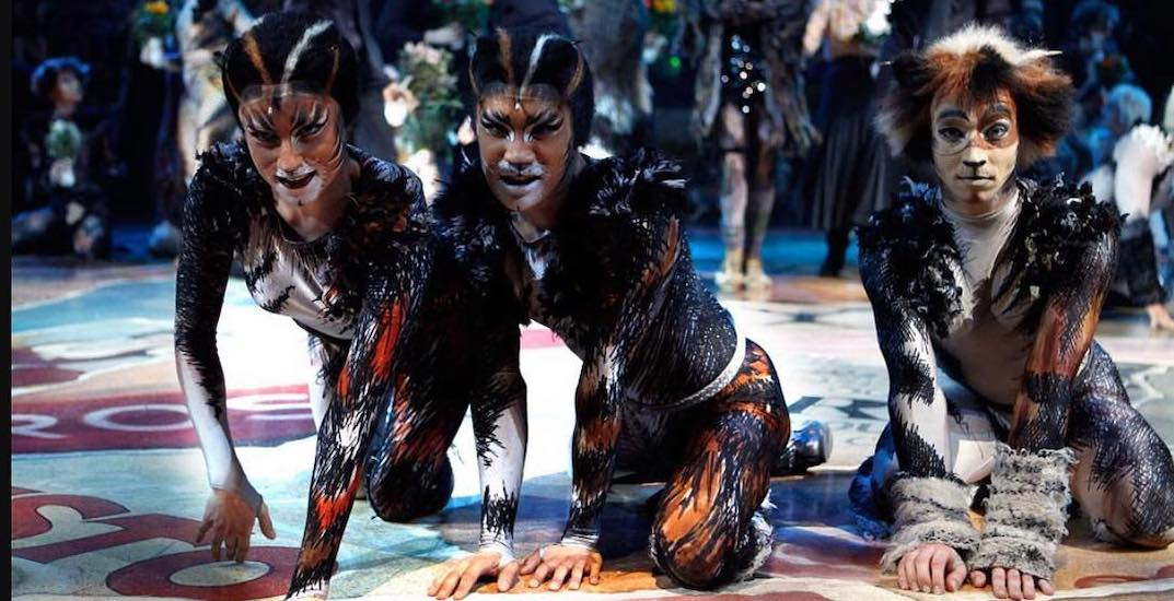 The Cats musical is coming to Place des Arts this spring
