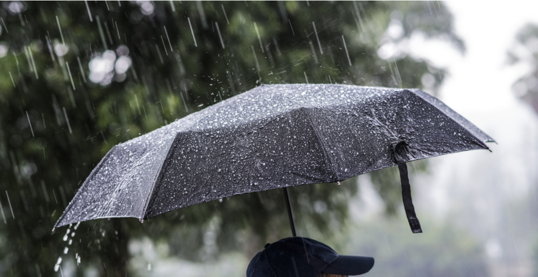 Rainfall warning calls for up to 60 mm over parts of Metro Vancouver