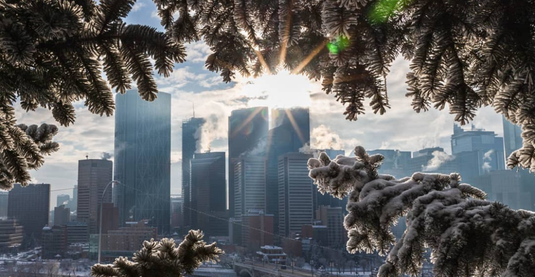 These festive pics of a Calgary Christmas are simply stunning (PHOTOS)