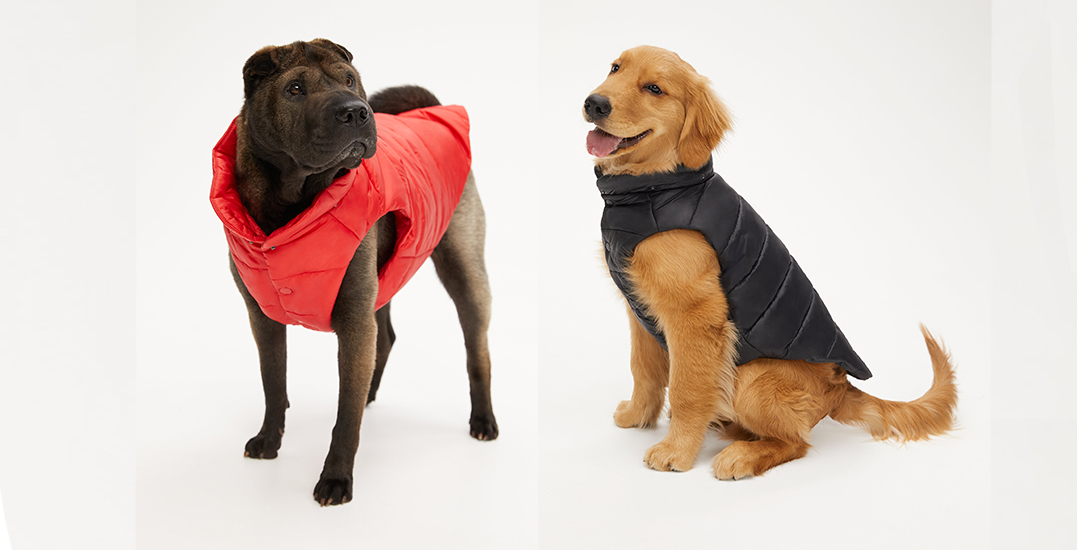 The Ruff Puff: Aritzia unveils first-ever puffer vest for dogs