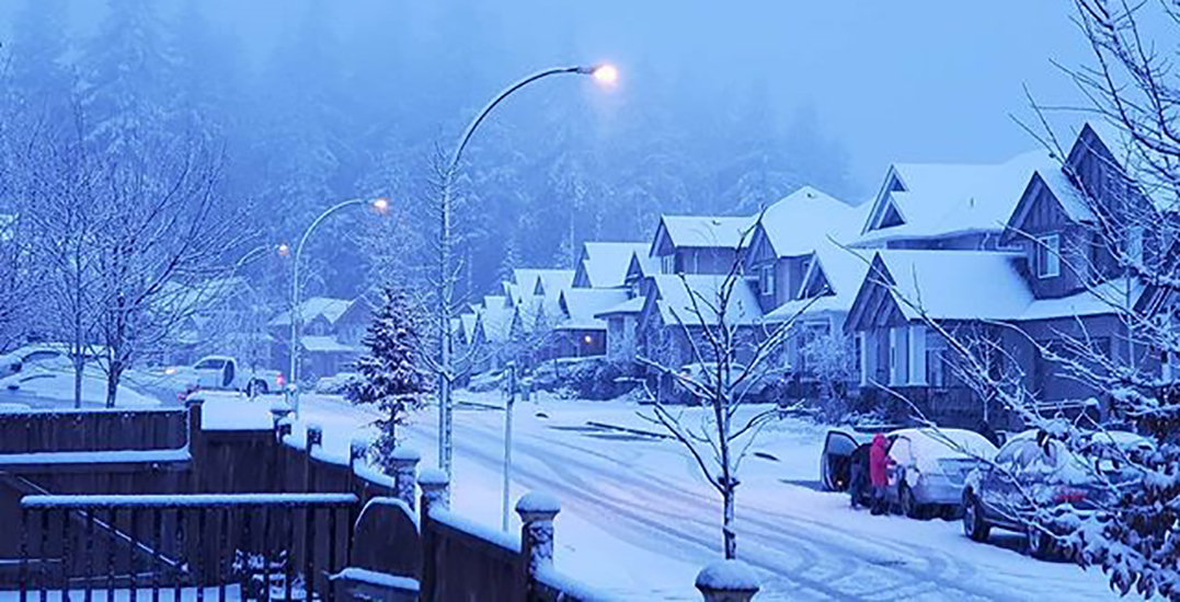 This is what Metro Vancouver's first snowfall of 2020 looks like (PHOTOS)