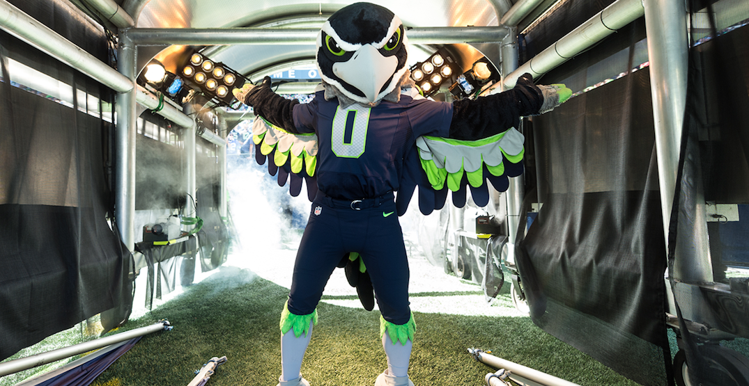 Here are 8 possible replacements for Blitz the Seahawk