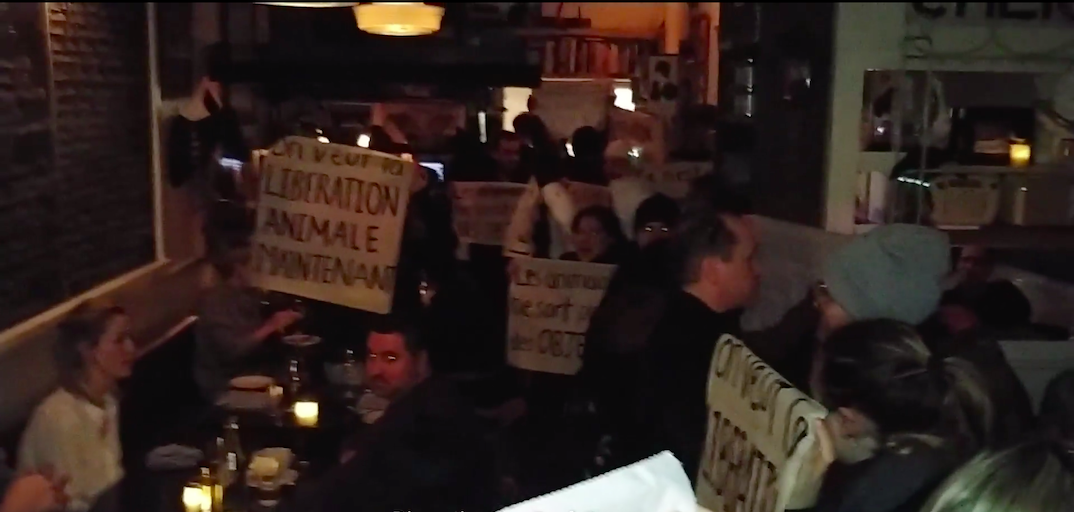 Animal rights activists protest during dinner service inside Joe Beef (VIDEO)