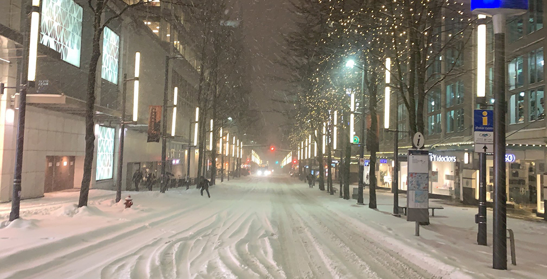 20 shots of what Vancouver looks like after Tuesday's snowstorm (PHOTOS)