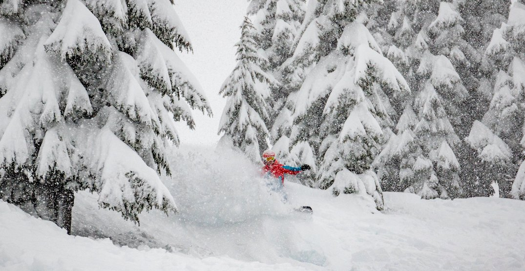 6 new runs are now open on Stevens Pass