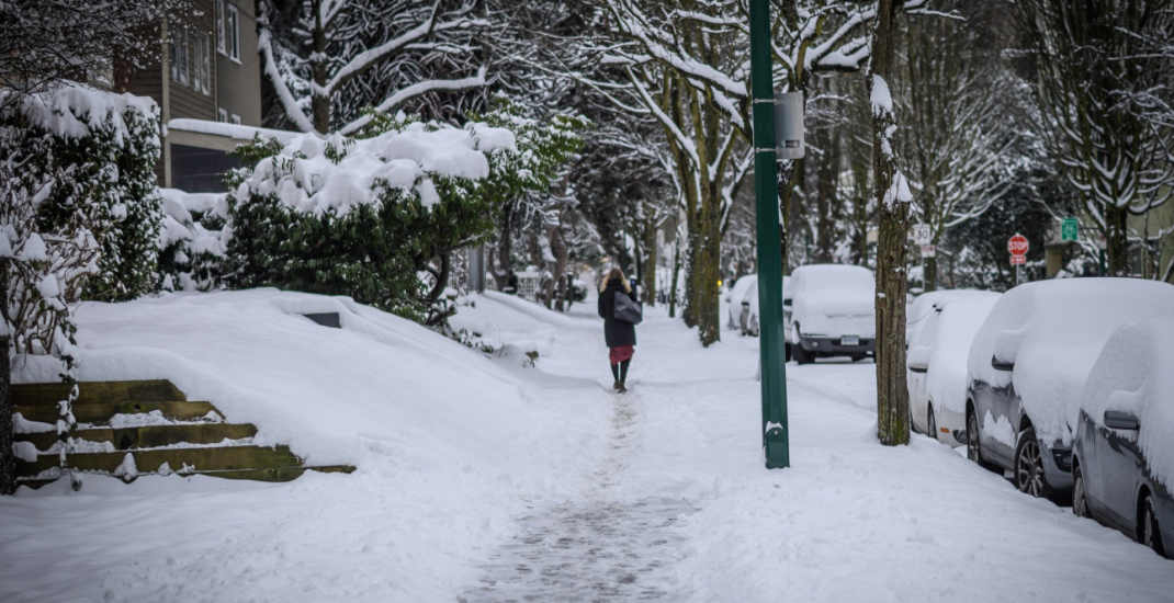 Nearly 30 cm of snow has fallen in Metro Vancouver over the past 24 hours