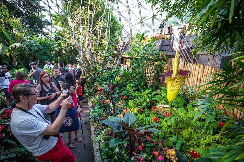 bloedel floral conservatory vancouver