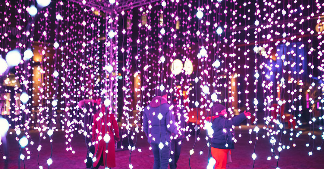 Here's what this year's Toronto Light Festival looks like (PHOTOS)