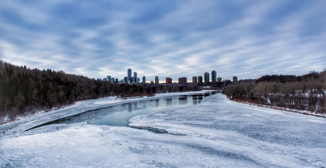 20 things to do in Edmonton this week: January 20 to 23