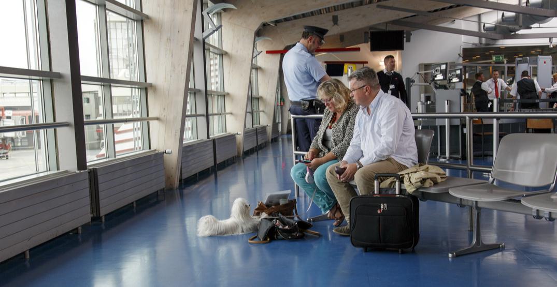 service-animal-airport-DOC