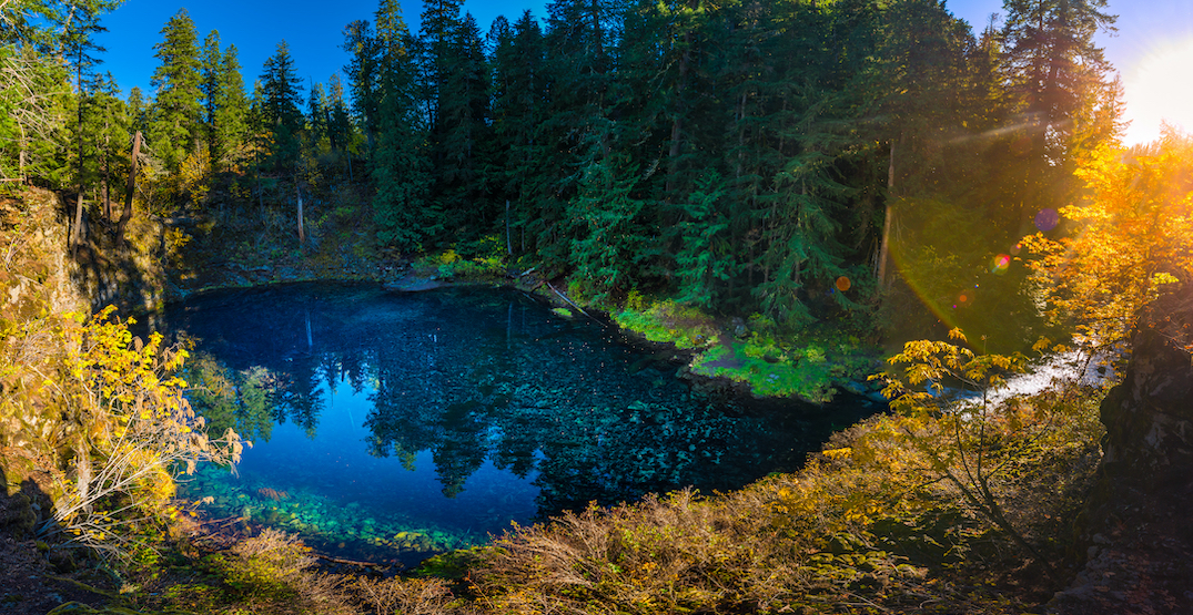 Outstanding Oregon: Tamolitch Blue Pool will hypnotize you (PHOTOS)