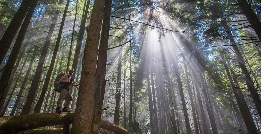 5 of the most picturesque locations on Vancouver Island
