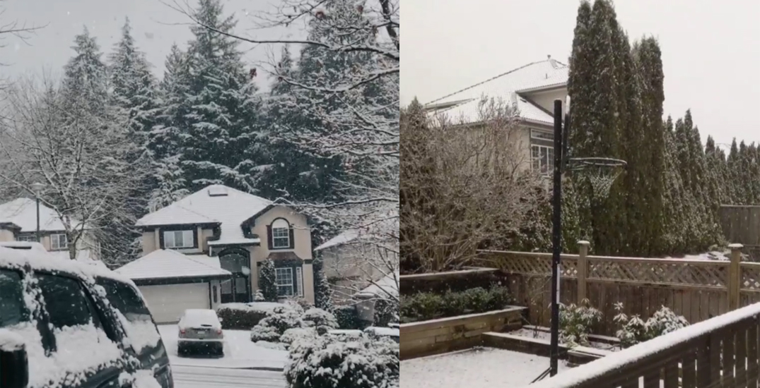 It snowed in parts of Metro Vancouver Sunday