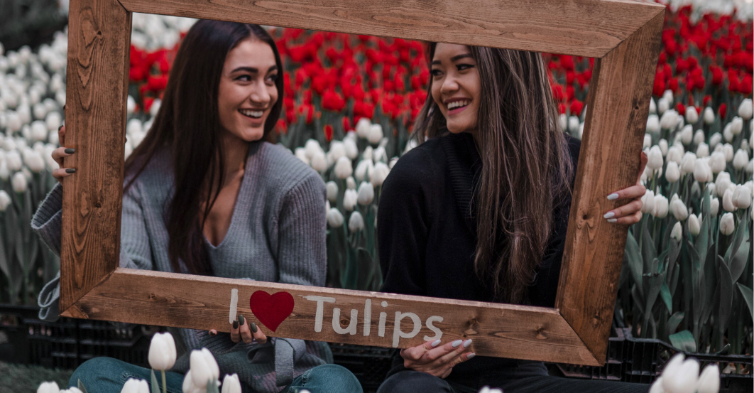 A huge display of 14,000 live tulips is popping in Metro Vancouver in March