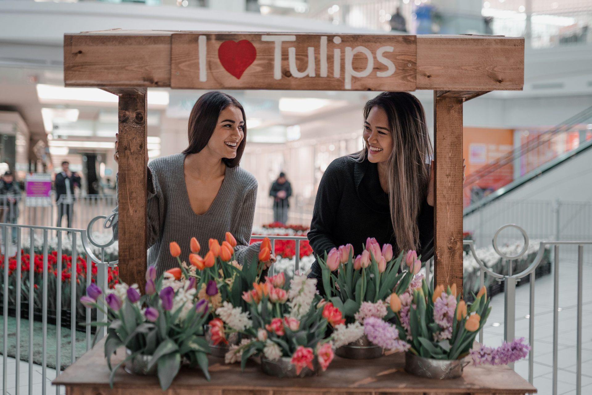tulips metro vancouver