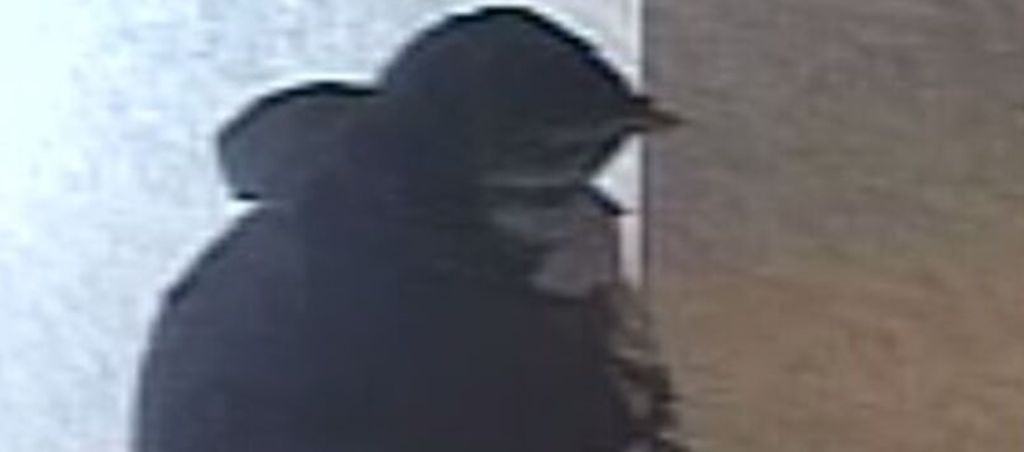 Man allegedly throws 87-year-old woman from her walker then robs her at home