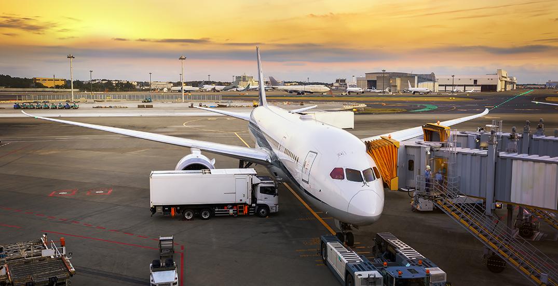 Canada charters plane to evacuate citizens aboard Diamond Princess cruise ship