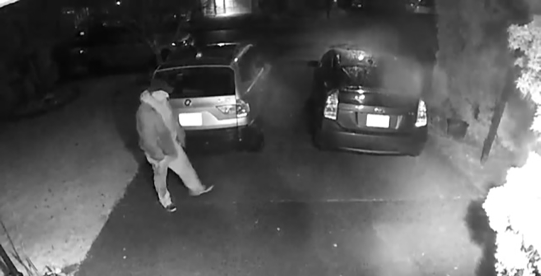 RCMP seek suspect after 25 vehicles vandalized in Metro Vancouver