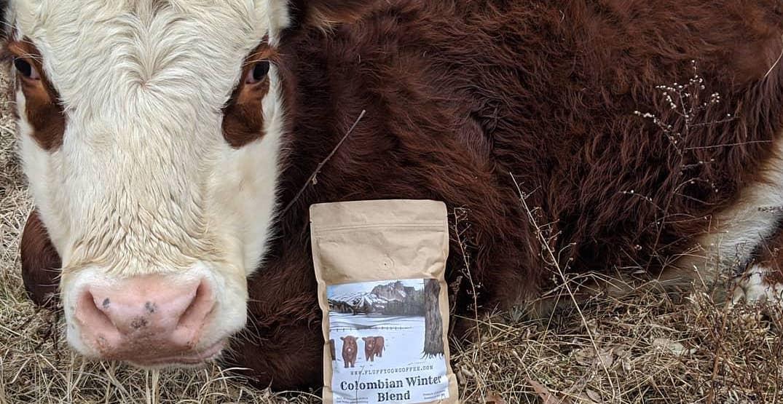 Washington-based coffee company using profits to send animals to sanctuaries