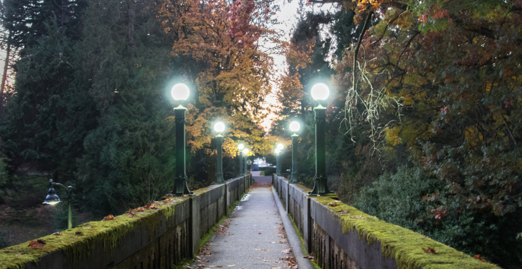 5 of the best spots in Seattle to go for a rainy day hike