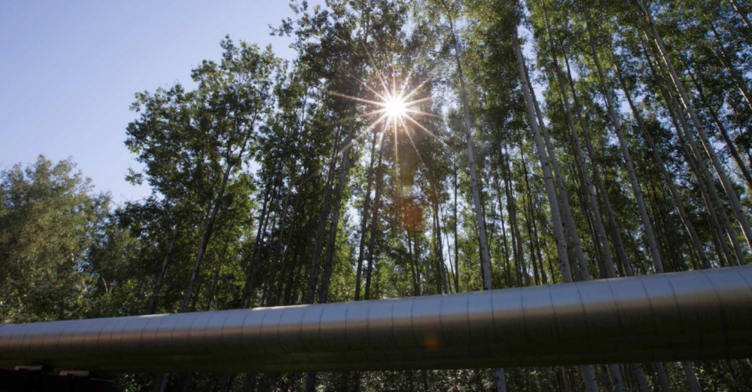 Suncor oil sands project receives approval from provincial government