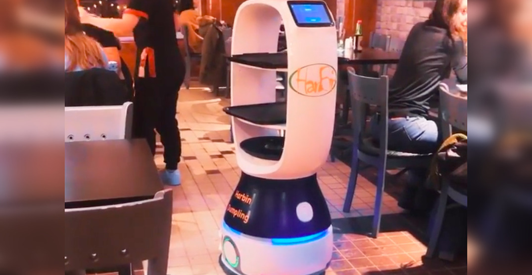 """This Montreal restaurant has Quebec's first """"robot busser"""" (VIDEOS)"""