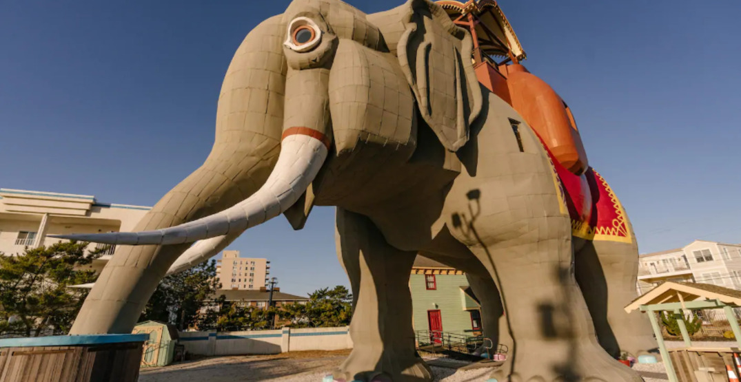 Pack up your trunk and spend the night inside this giant elephant Airbnb