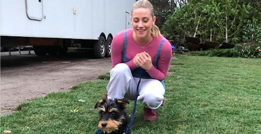 Riverdale's Lili Reinhart adopts puppy from local shelter (PHOTOS)