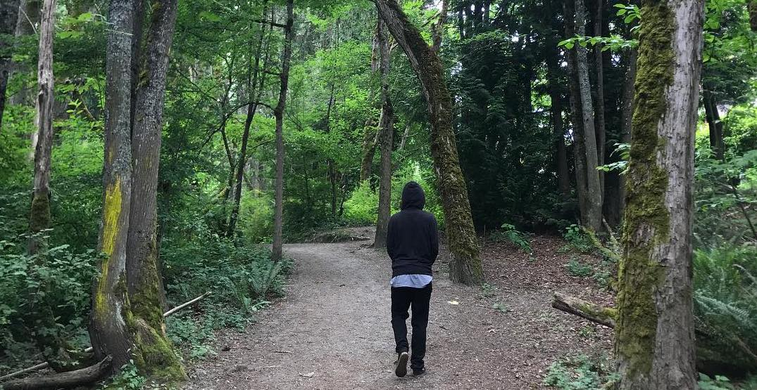7 hikes in Seattle that are perfect for even the laziest of people