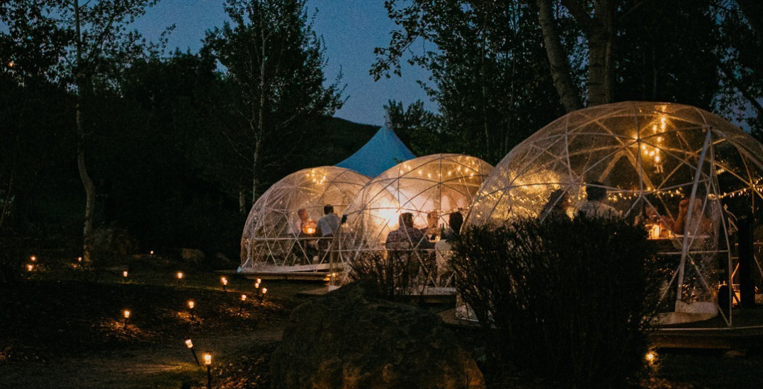 Everything to expect from Dine Under the Stars' four-course dinner series
