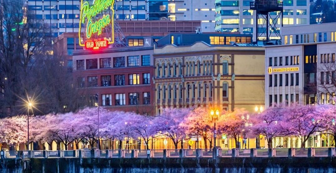 Here's what the first day of spring looks like in Portland (PHOTOS)