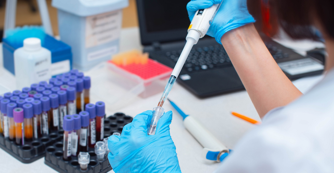Get a free coronavirus antibody test when you donate blood this month