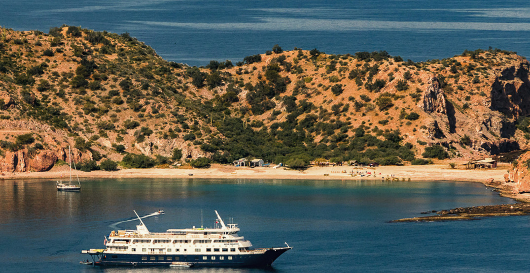 """""""Uncruising"""" on the Sea of Cortez: The Galapagos of the North"""