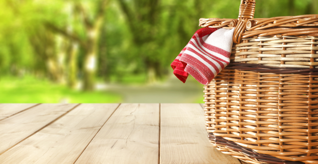 BC Parks Foundation hosting a province-wide virtual picnic this weekend
