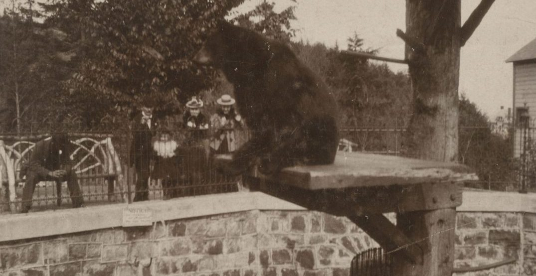 Throwback Thursday: The Oregon Zoo started as a pit filled with bears (PHOTOS)