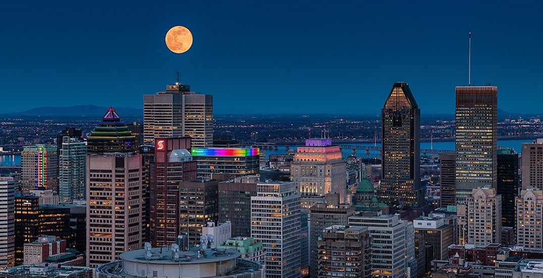 20 shots of last night's gorgeous 'pink moon' above Montreal (PHOTOS)