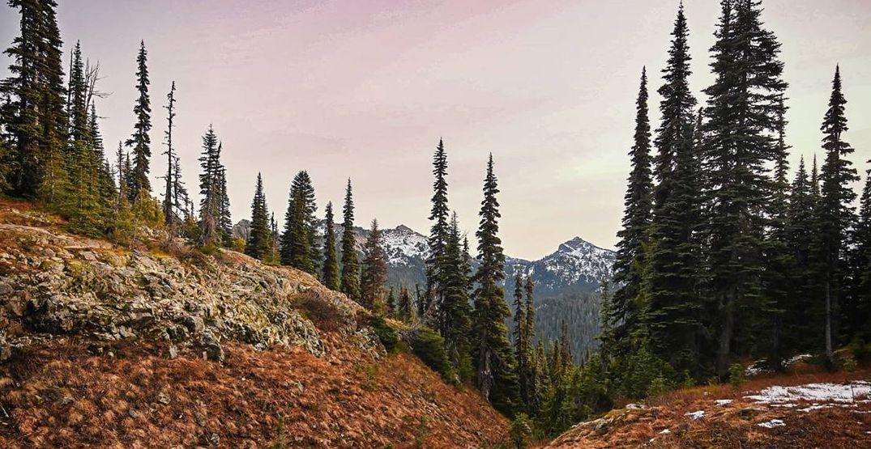 Washington State Parks to reschedule April free days